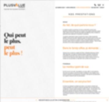 PlusValue Conseil site Internet