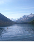 CUEX 2015 Altai 6.png