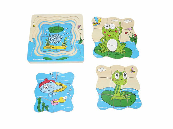 Frog Lifecyle Puzzle