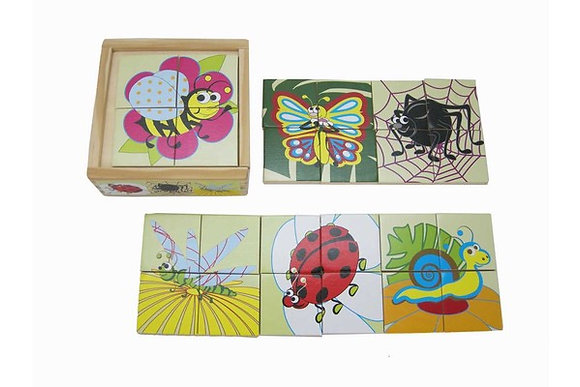 Puzzle Box Insects