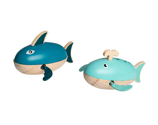 Shark and Whale wind up