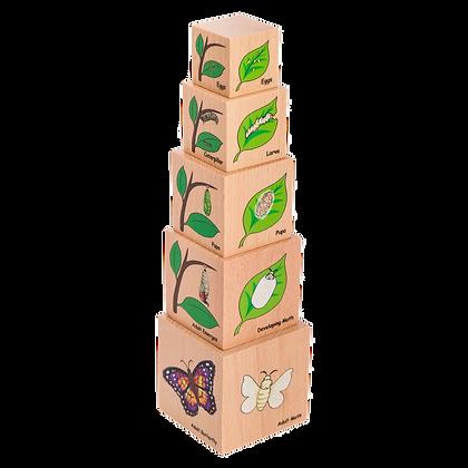 Lifecycle Blocks