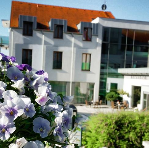Diamant hotel (Hluboka, Czech republic)