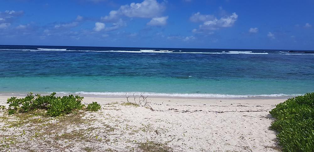 La cambuse pláž Dovolená na Mauriciu - stojí za návštěvu