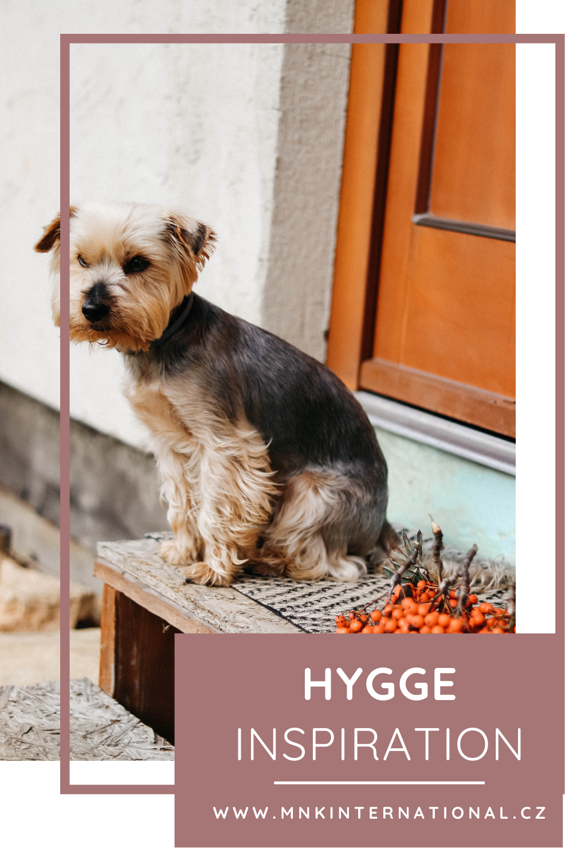 Mountain cottage lifestyle | Hygge