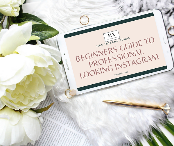 Instagram guide ebook successful and pro