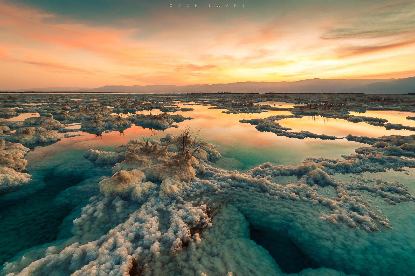 צילום ים המלח