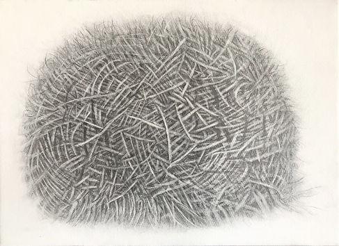 being '21-1 鉛筆、色鉛筆、木炭、コンテ、紙、パネル