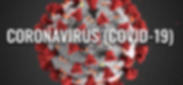 corona virus image.JPG