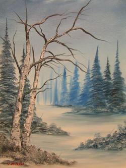 Snowy Hollow