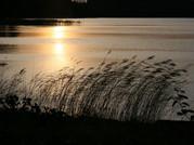Why is calmness envigorating my life?