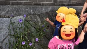 お散歩&お部屋遊び🌞~福岡県飯塚市 幸袋らぶはーと保育園~