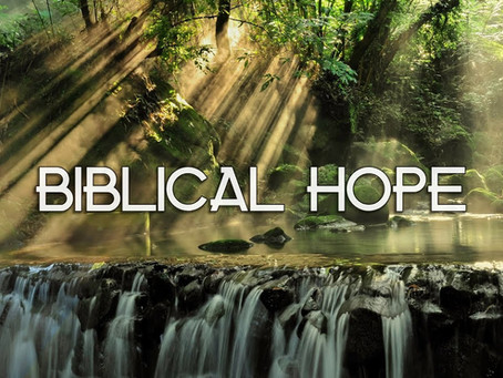 A good, lively and blessed hope