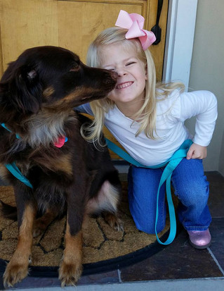 Ways for Your Children to Help Train the Family Dog.