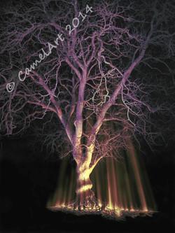 Midnight Tree - coloured 15