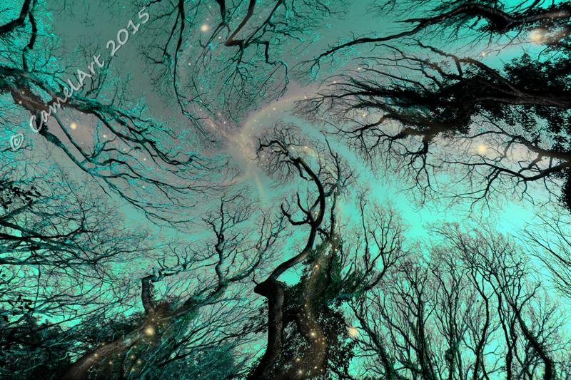 Dreaming Trees - Azure Sky