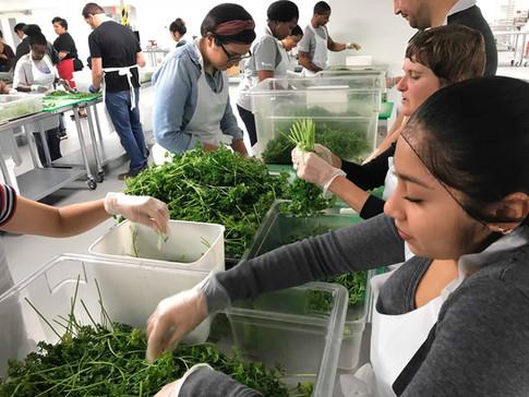 Volunteer - Food Handling _ LA