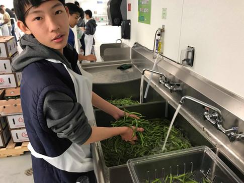Volunteer - Food Washing _ LA