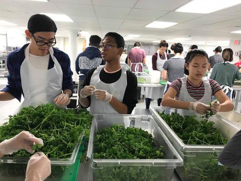 Volunteer _ LA Kitchen 2018