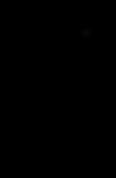 K9-Unleashed dog Logo 120dpi.png