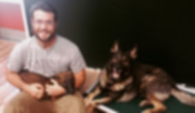 Puppy to Adult protection dog training