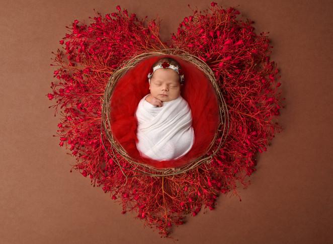 valentine1 copy.jpg