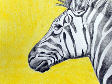 Of Zebras & Fingerprints