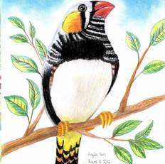 Angela Do Do Bird