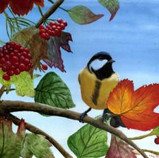 Elyssa Bird w Berries