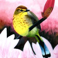 Elyssa Yellow Bird