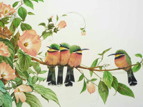 Four Bee Eaters