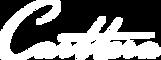 logo-carttera WHITE.png