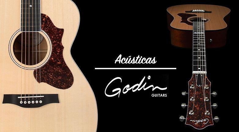 godin-acoustic (editado).jpg