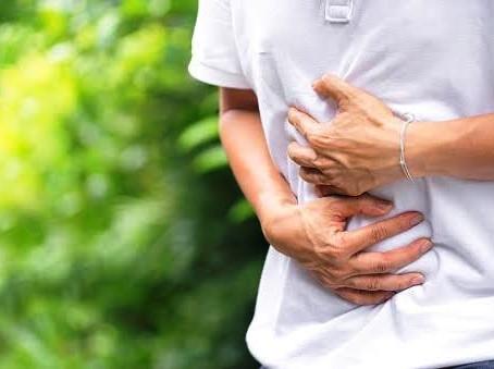Para quê serve o apêndice?