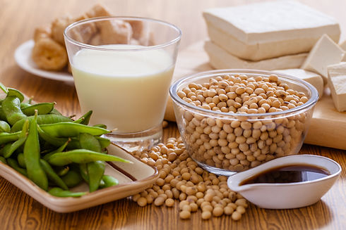 Soy bean, tofu and other soy products-sh