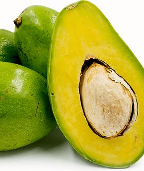 FL-avocado.png