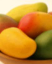 ripe mangoes.jpg