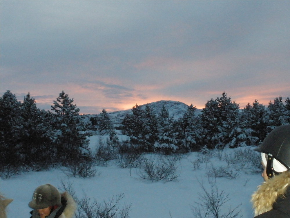 Pink and purple skies peek from behind a snow-covered mountain, with snow covered pine trees in the midground. Two people in horseback riding gear are in the foreground.