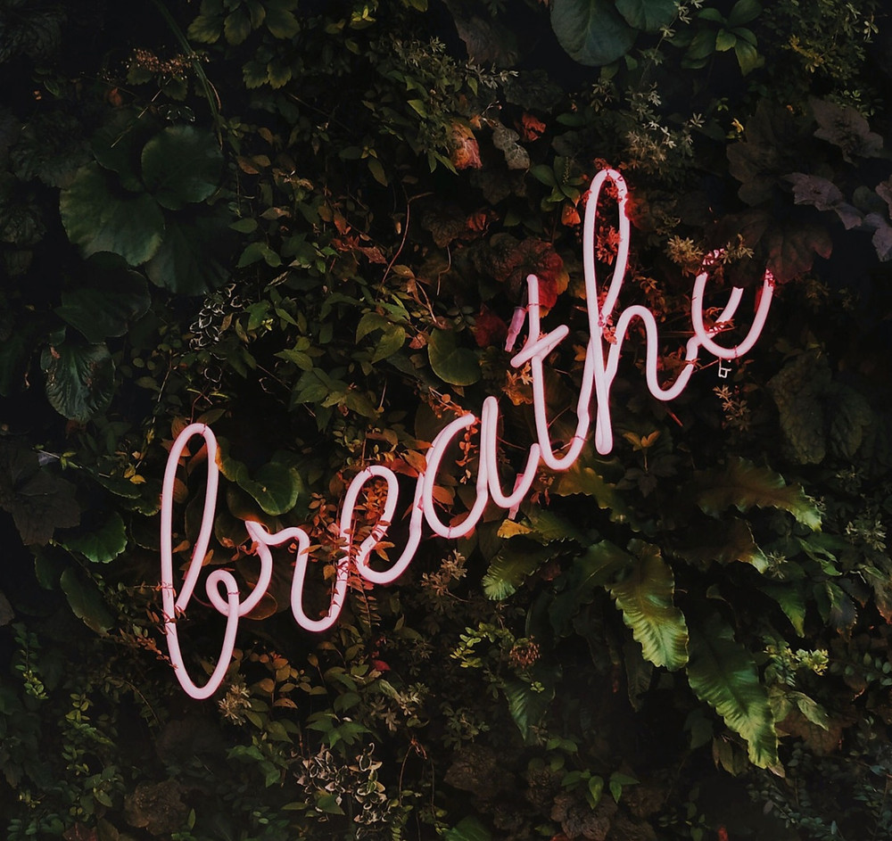 "A pink neon sign that spells ""breathe"" on a background of ivy and other dark green foliage. The sign is angled with the ""b"" in the bottom left corner and the ""e"" in the top right corner."