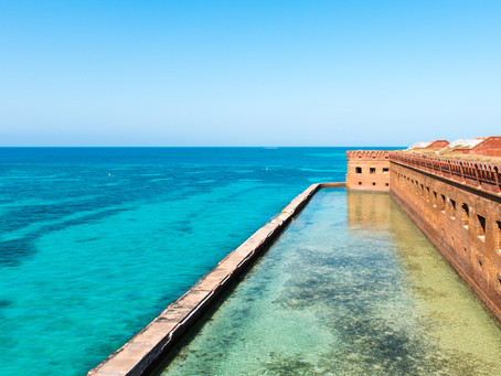 Welcome to The Dry Tortugas!
