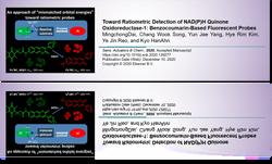 Toward Ratiometric Detection of NAD(P)H Quinone Oxidoreductase-1: Benzocoumarin-Based Fluorescent Pr
