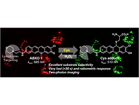 2020(A benzo [b] xanthene-derived fluore
