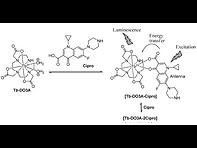 2016(Detection of Ciprofloxacin in Urine