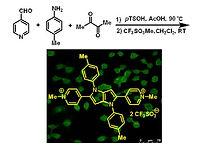 2017(water-soluble pyrrolo[3,2,-b]pyrrol
