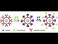 2011(Nanoparticle-based indicator-displa