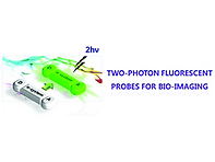 2014(Recent development of two-photon fl