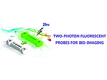 2014(Recent development of two-photon fl