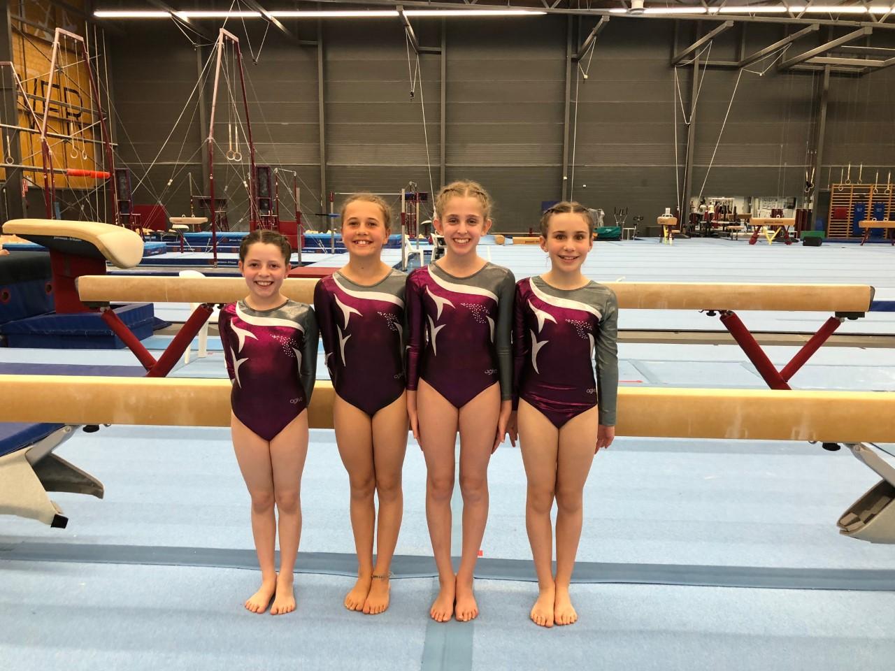 IPSHA girls 2018 gymnastics NSW Sydney.j