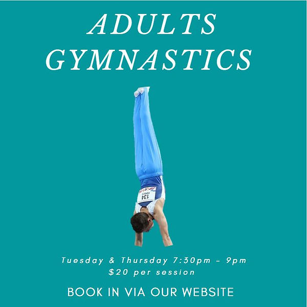 Adults Gymnastics.JPG