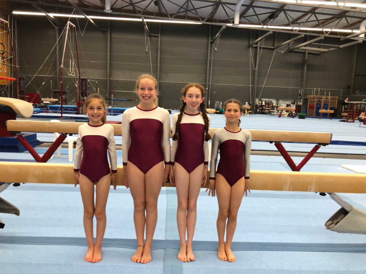 IPSHA girls 2018 2 gymnastics nsw sydney